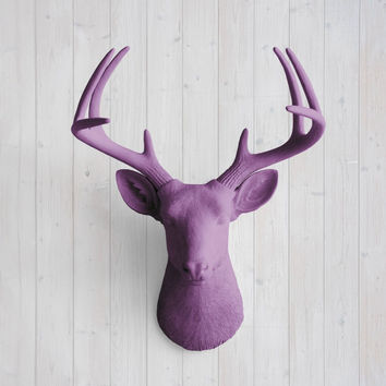 The Virginia Large Violet Faux Taxidermy Resin Deer Head Wall Mount | Violet Stag w/ Colored Antlers