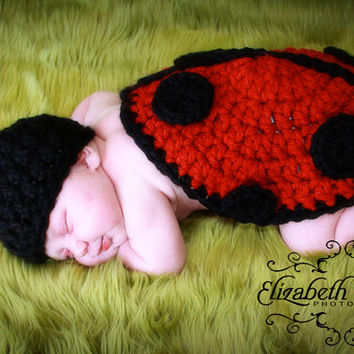 The Littlest Ladybug Crochet Pattern