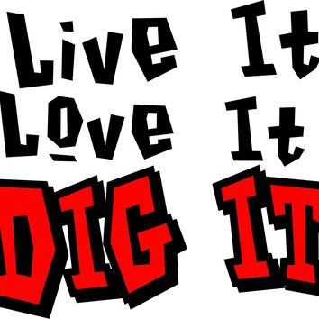 Live It Love It Dig It Volleyball color decal sticker