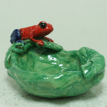 Poison Dart Frog Blue jean pumilio ring tiny ring dish