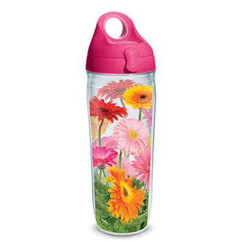 Gerbera Daisies Wrap With Lid | Tervis Official Store