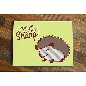 You're Lookin' Sharp! – Funny Hedgehog Card