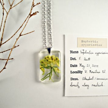 Cypress Spurge (Euphorbia Cyparissias) Resin Pendant, Botany Jewelry, Preserved Specimen, Biology Necklace