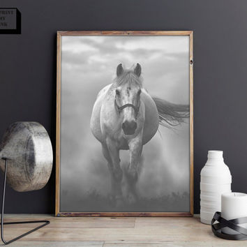 White Horse Photo, Wild Horse Print, Black and White Photography, Black and White prints, Black and white decor, Horse Art, Animal print