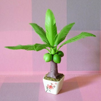 Mini Coconut tree H14.5 cm. tropical fruit plants / Doll house decorative/ tree figure /miniature plants/ Dollhouse plants