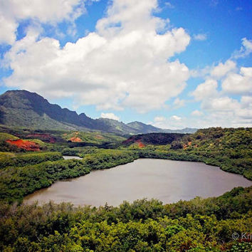 Nature Tropical  Landscape Hawaii Photography - Kauai Fine Art Print - Scenic Island View - Beautiful Hawaiian Mountains