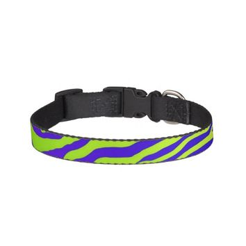 Green Zebra Pet Collar