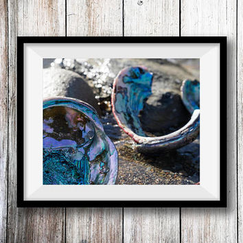 Abalone Shells Wall Art Print -- Fine Art landscape photography, Ocean, Beach, California, Home Decor, HeatherRobersonPhoto