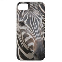 Zebra face, black/white stripes, wild animals iPhone 5 cases from Zazzle.com