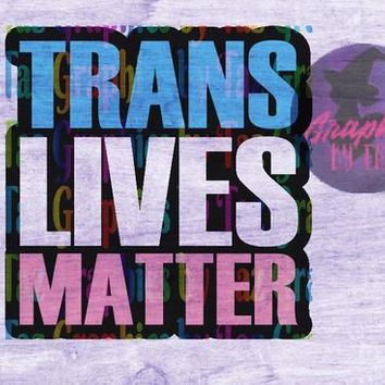Trans Lives Matter Version 2 SVG cut file for Cricut and Silhouette Cutting machines