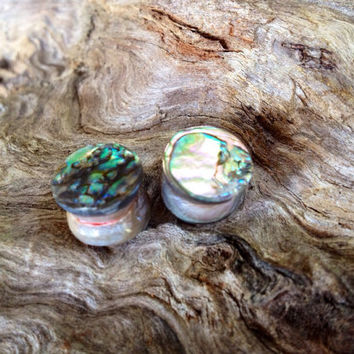 California red abalone plugs--Item #120