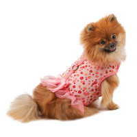 Martha Stewart Pets® Fairy Floral Harness Dress - Clothing & Accessories - Dog - PetSmart