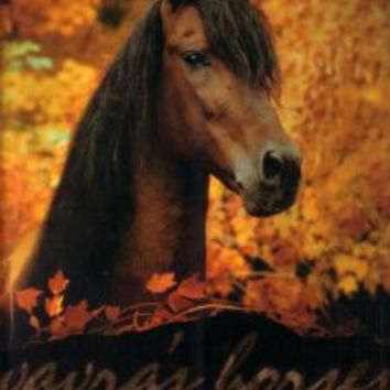 Vavra's Horses: Ten of the World's Most Beautiful Equines by Robert Vavra
