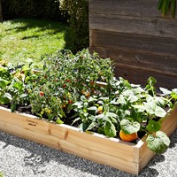 Farmer D Cedar Rectangular Raised Bed Kit