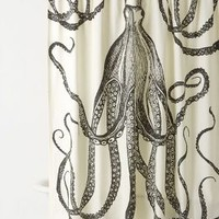 Thomas Paul Octopus Garden Shower Curtain in Dark Grey Size: One Size Shower Curtains