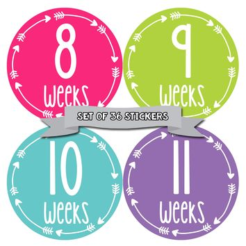 Bright and Colorful Weekly Pregnancy Deluxe Set of 36 Stickers