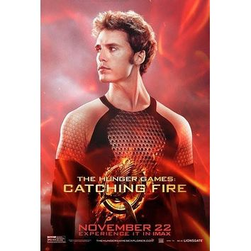 Hunger Games Catching Fire poster Metal Sign Wall Art 8in x 12in