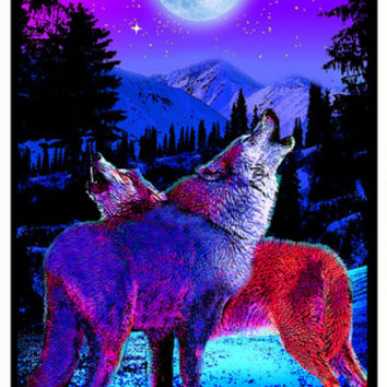 Timberwolves Flocked Blacklight Poster Posters at AllPosters.com