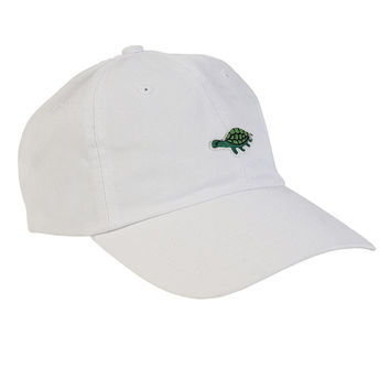 Turtle Time Hat