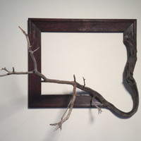 "Wood frame with grafted manzanita branch - ""Agnes"""