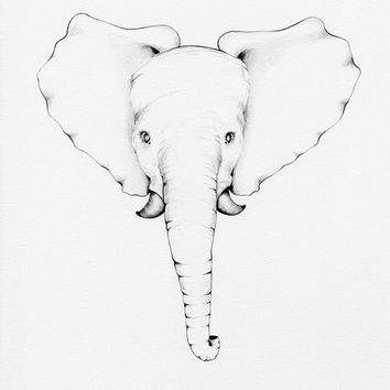 Kids Wall Art Baby Elephant Drawing Illustration Fine Art Print of my Original Pencil Drawing Nursery Room Decor Toy Baby Elephant Minimal