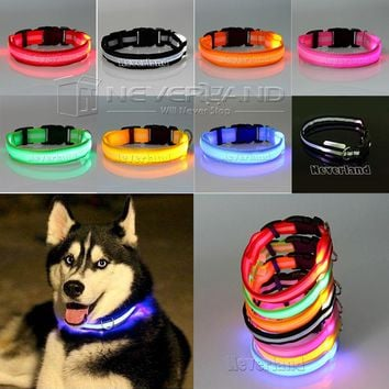 Pet Cat Dog Glow LED Collar Flashing Light Up Nylon Night Safety Collars Supplies 8 Color XS S M L Size Dropship USPS Shipping
