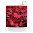 """Angie Turner """"Red Leaves"""" Maroon Leaf Shower Curtain"""