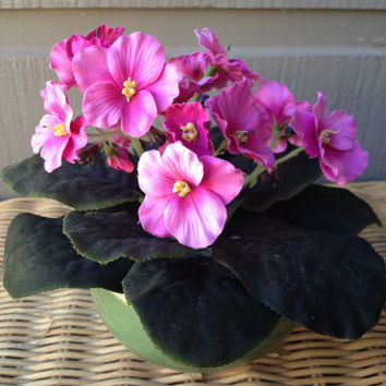 Handmade Artificial Floral Arrangement: Pink Pansies in Green Ceramic Pot