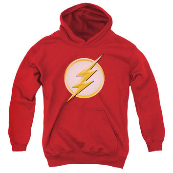 Youth Flash/New Logo Hooded Sweatshirt