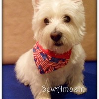 Grand Old Flag Dog Bandana Over-the-Collar Reversible Large-XLarge