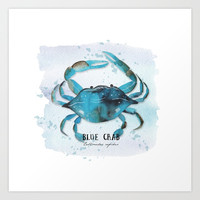 blue crab Art Print by Sylvia Cook Photography