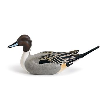 Pintail Decoy