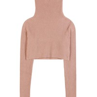 Knitted wool and cashmere cropped turtleneck top