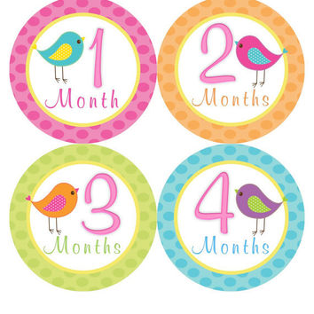 Monthly Onesuit Stickers Girl Baby Month Stickers Hot Pink Bird Birdie Monthly Onesuit Sticker Baby Shower Gift Photo Prop -Bonnie