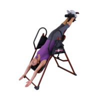 Bench - Inversion Table