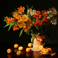 Apricot Freesia Fragrance Oil | Bramble Berry® Soap Making Supplies