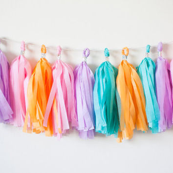 Medium Teal, Purple, Medium Pink, Orange Tassel Garland (12)