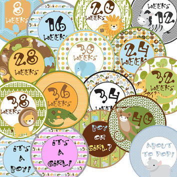 16 Safari Zoo Forest Animal Pregnancy Maternity Baby Bump New Mom to Be Baby Shower Gift Stickers