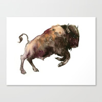 Bison, Bull Canvas Print by sureart
