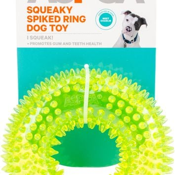 ASPCA Squeaky Spiked Ring Dog Toy-Green