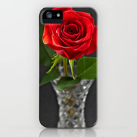 Red Rose in a small Vase iPhone & iPod Case by Karl Wilson Photography