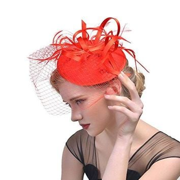 ZYCC Vintage Feather Fascinator Looped Flower Veil Hat Hair Clip Wedding Party