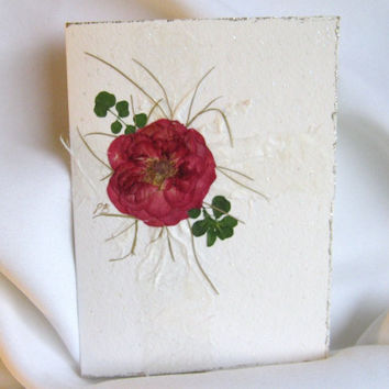 Dried Pressed Flower Card, Rose Bow On A Wedding Package