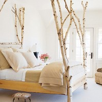 Bringing The Outdoors In: Birch Tree Decor | Apartment Therapy DC