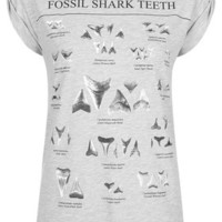 Fossil Shark Teeth Tee by Tee and Cake - Grey Marl