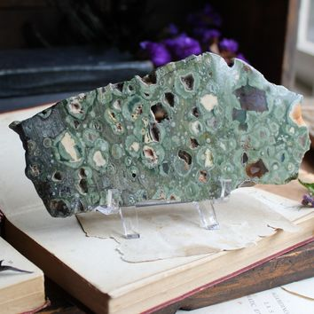 Rainforest Jasper Slab w/Stand