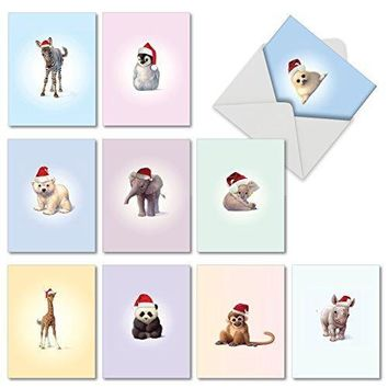 10 Assorted 'Christmas Zoo Babies' Merry Christmas Cards with Envelopes, Boxed Season's Greetings Cards for Baby Showers and Kids, Adorable Baby Zoo Animals in Santa Hats