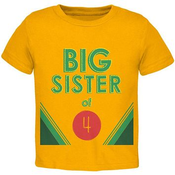Crayon Big Sister of 4 Toddler T Shirt