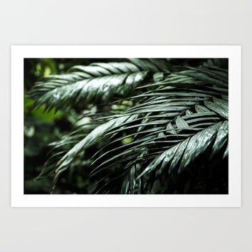 Tropical leaves 03 Art Print by VanessaGF