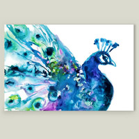 Pretty Peacock Art Print by emmakaufmann on BoomBoomPrints